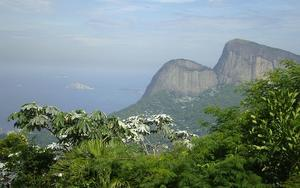 Thumbnail for Tijuca National Park